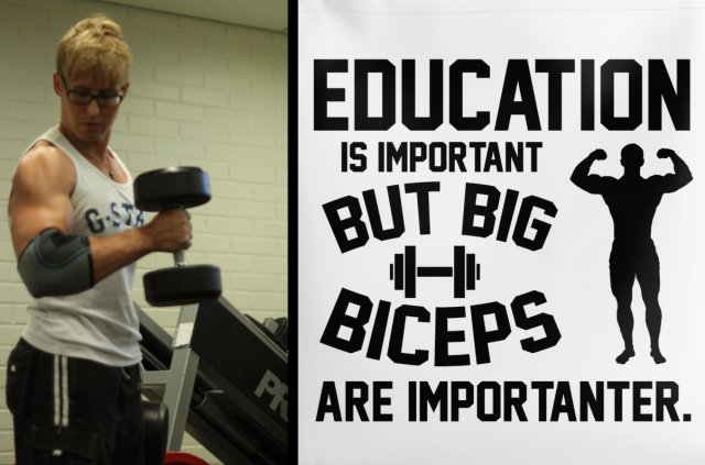 biceps_education